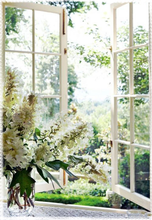 window-open-to-spring-air